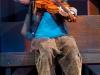 fiddler-13sm